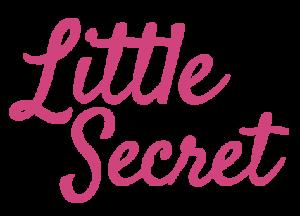 Little Secret jouwveilige Nederlandse webshop voor seksspeeltjes